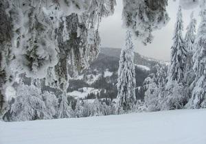 Погода в Украине - Старый Новый год - На Старый новый год в Украине ожидается снег и мороз