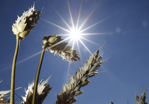 Россия частично сняла запрет на экспорт зерна