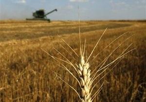 Украина за прошедший год увеличила экспорт зерна более чем на 90%