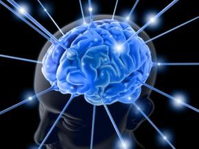 Колумбийские ученые выяснили, что грамотность меняет мозг
