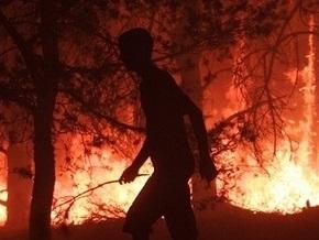 В одном из сел Черниговской области за ночь неизвестные совершили три поджога