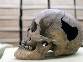 Ученые: Предки современного человека ели неандертальцев