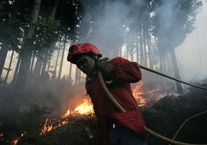 Лесные пожары начались в Португалии