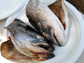Украина резко нарастила экспорт рыбы