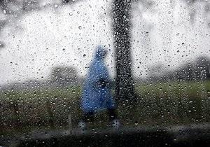 Из-за непогоды в Одессе падают деревья: один человек погиб