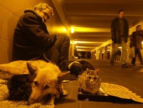 B 2009 году безработица в Украине вырастет втрое