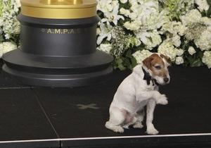 Пес Угги стал первой собакой, получившей Оскар