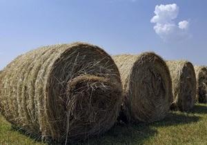 На Волыни неизвестные сожгли 250 тонн сена
