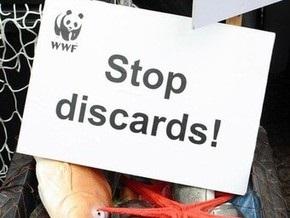 WWF назвал десятку самых вредных для природы новогодних подарков
