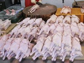 Ъ: Разрешение на экспорт курятины не откроет рынок ЕС для Украины - эксперты