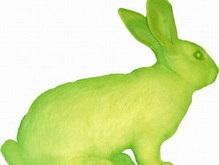Китайская клонированная крольчиха родит зеленое потомство