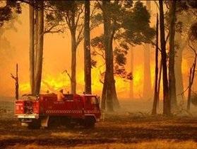 Спасательные службы Австралии борются с лесными пожарами: огонь уничтожил 20 домов