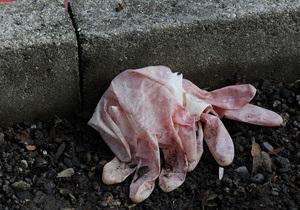 Киевская милиция обнародовала подробности убийства 12-летней школьницы