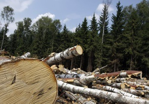 Экологи: Закон регионала Мирошниченко позволит изымать лес в интересах бизнеса