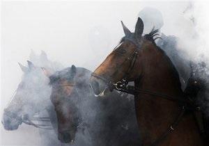 Телеканал HBO остановил съемки сериала с Дастином Хоффманом после гибели лошадей