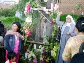 Образ Девы Марии явился на стволе вишни в Перу