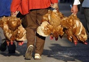В Китае впервые за полтора года от птичьего гриппа умер человек