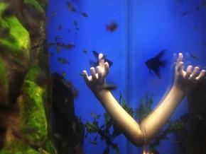 Изобретен аквариум для слепых