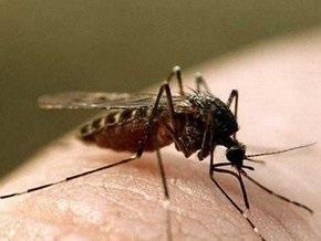 В Финляндии комар помог раскрыть преступление