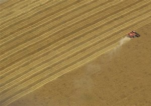 ВР проголосовала за присоединение Украины к конвенции о торговле зерном