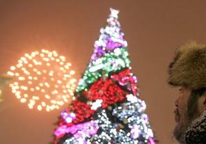 В Киеве новогодние елки переработают в удобрения