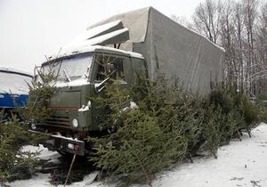 Мужчина нелегально перевозил елки