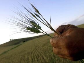 ЕБРР инвестирует €220 млн в сельское хозяйство Украины