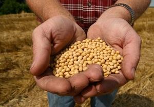 ООН предрекает резкий рост урожая зерна в Украине и России