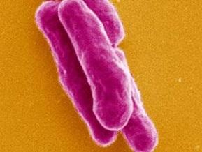 На  Закарпатье упал уровень заболеваемости туберкулезом