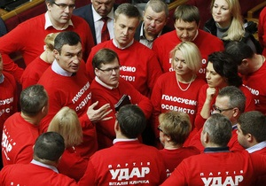 УДАР будет добиваться отмены закона о всеукраинском референдуме