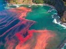 США угрожает красный прилив