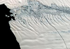 В Западной Антарктике зафиксировали аномальный рост температуры
