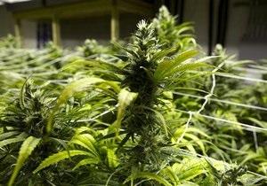Новости США - марихуана: В США тайник с марихуаной нашли благодаря пожару в доме
