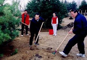В этом году в Китае высадят 2,5 миллиарда деревьев