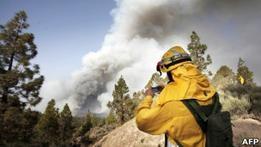 Пожар на Канарах угрожает уникальной флоре