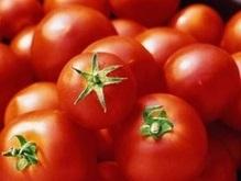 Лучшие томатные пасты, продающиеся в Украине