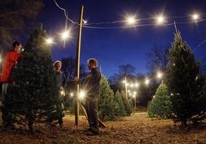 Синдром рождественской елки: Медики советуют мыть праздничное дерево перед установкой в доме