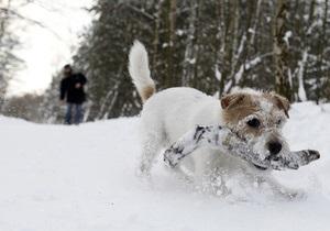 Фотогалерея: Полмира засыпало рекордным слоем снега