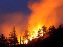В Боржомском районе горят леса. Грузия обвиняет Россию