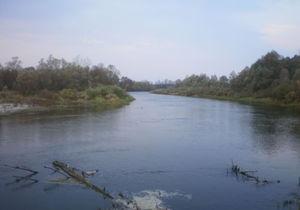В Сумской области автомобиль упал в реку: трое погибших