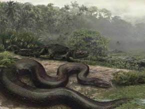 Найдены останки самой большой в мире змеи