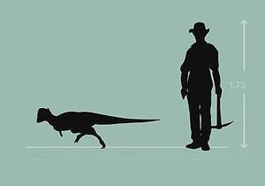 В США обнаружили новый вид динозавров размером с собаку