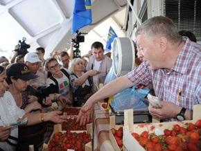 Жириновский устроил распродажу клубники на московском рынке