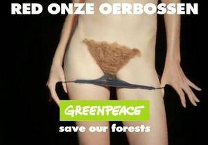Вот так голландский Greenpeace призывает сохранить леса