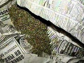 Студенты осуждены за продажу мочегонного чая под видом марихуаны