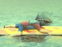 Американец отбил у акулы своего пса
