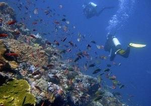 Ученые обнаружили морские бактерии, образующие электропровода