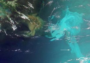 BP не оставляет попыток остановить разлив нефти: в устье скважины закачают цементный раствор