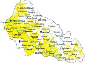 На Закарпатье перекрыли крупный канал нелегальной миграции