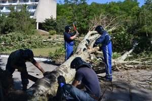 ураган Одесская область - Янукович взял под контроль ликвидацию последствий урагана в Одессе